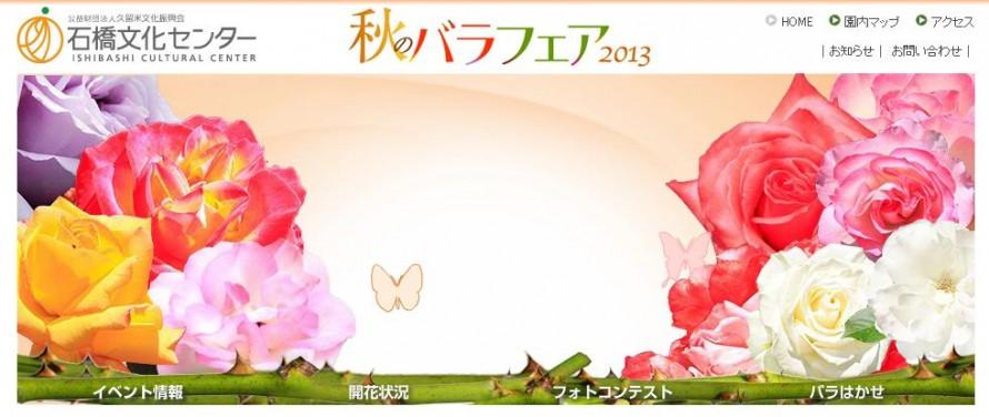 10.22rose-fair