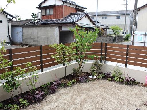 中庭の植木