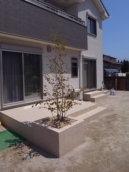 tree-tilterrace01